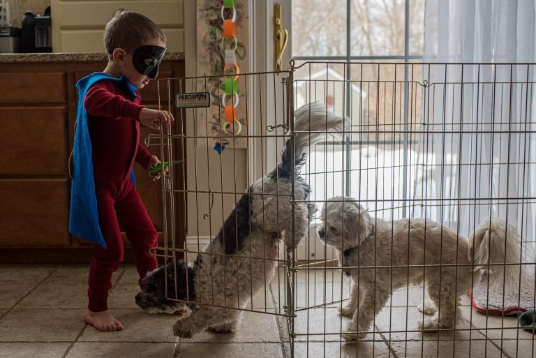 Boy dressed as a superhero looks like he's freeing the dogs as they excitedly jump out of the cage he just opened